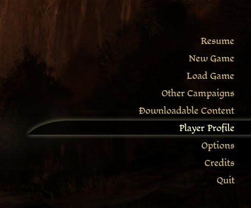 Dragon Age Origins Launch Menu Player Profile